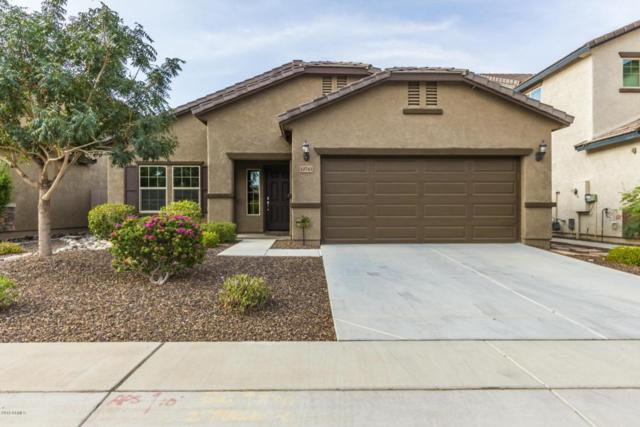 10743 W Yearling Road, Peoria, AZ 85383 (MLS #5810373) :: Santizo Realty Group