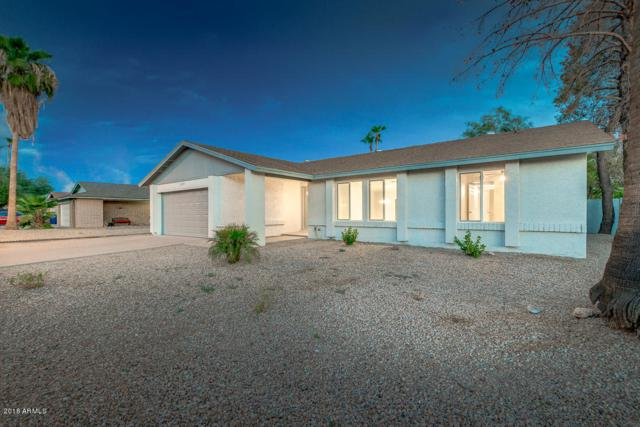 1209 W Loughlin Drive, Chandler, AZ 85224 (MLS #5810413) :: The Everest Team at My Home Group