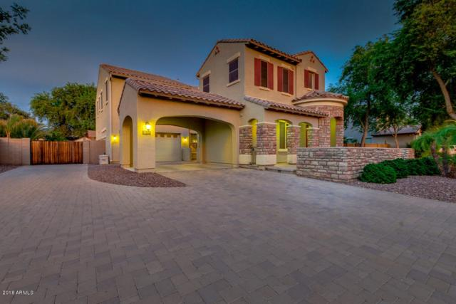 2633 S Roanoke Street, Gilbert, AZ 85295 (MLS #5810486) :: Gilbert Arizona Realty