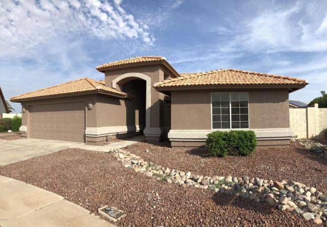 11072 W Runion Drive, Sun City, AZ 85373 (MLS #5810520) :: The W Group