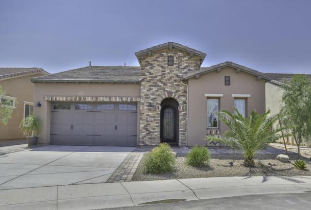 65 E Atole Court, San Tan Valley, AZ 85140 (MLS #5810558) :: Santizo Realty Group