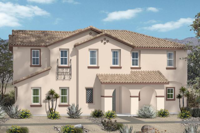16438 W La Ventilla Way, Goodyear, AZ 85338 (MLS #5810559) :: The Daniel Montez Real Estate Group