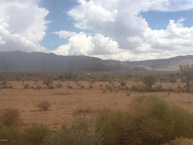 37 + Acres Huntington Ave, Kingman, AZ 86401 (MLS #5810692) :: Phoenix Property Group