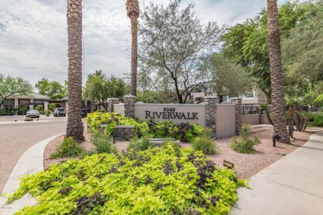 5345 E Van Buren Street #117, Phoenix, AZ 85008 (MLS #5810787) :: Brett Tanner Home Selling Team