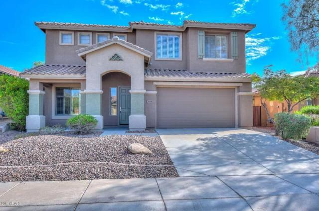 3634 W Ranier Court, Anthem, AZ 85086 (MLS #5810788) :: The Jesse Herfel Real Estate Group