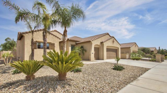 2029 N 164TH Avenue N, Goodyear, AZ 85395 (MLS #5810957) :: Occasio Realty