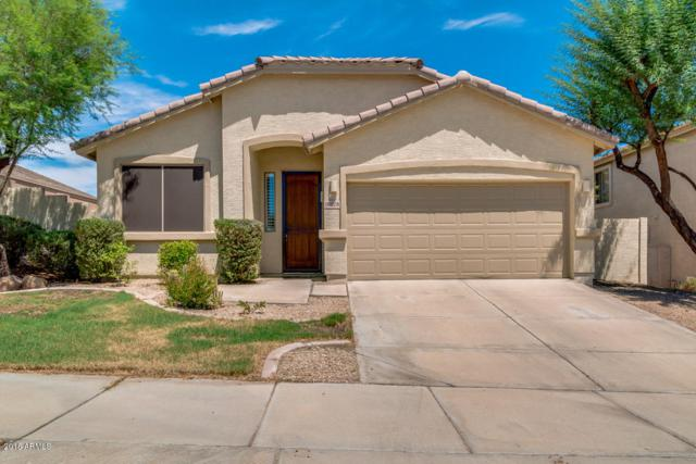 18228 W Canyon Lane, Goodyear, AZ 85338 (MLS #5810984) :: Yost Realty Group at RE/MAX Casa Grande