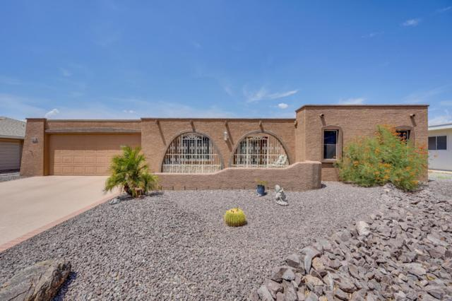 14214 N Cameo Drive, Sun City, AZ 85351 (MLS #5811043) :: The W Group