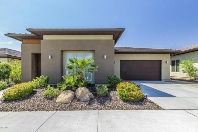 13183 W Lone Tree Trail, Peoria, AZ 85383 (MLS #5811077) :: Santizo Realty Group