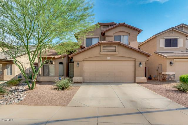 12333 W Denton Avenue, Litchfield Park, AZ 85340 (MLS #5811087) :: The Jesse Herfel Real Estate Group