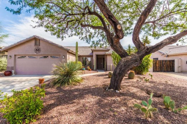 8928 E Amber Sun Way, Gold Canyon, AZ 85118 (MLS #5811108) :: The Everest Team at My Home Group