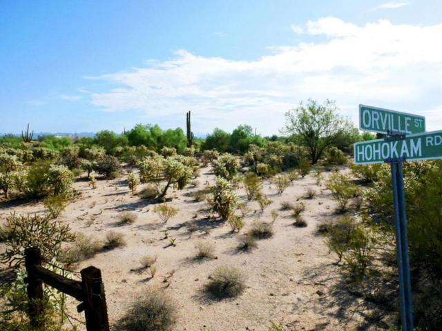 0 N Hohokam Road, Florence, AZ 85132 (MLS #5811398) :: The Daniel Montez Real Estate Group