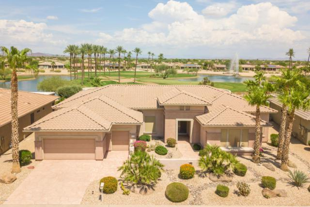 16932 W Links Drive, Surprise, AZ 85387 (MLS #5811401) :: CANAM Realty Group
