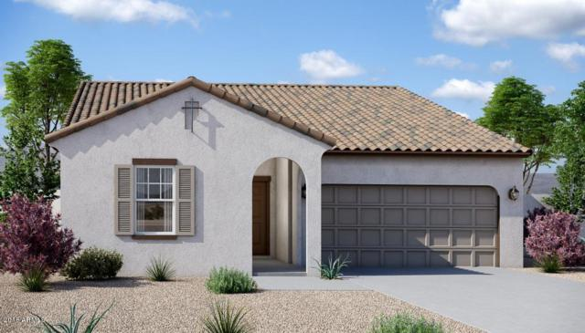 37334 W Cannataro Lane, Maricopa, AZ 85138 (MLS #5811447) :: The W Group