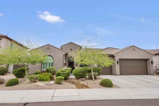 26752 N 90TH Lane, Peoria, AZ 85383 (MLS #5811459) :: Sibbach Team - Realty One Group