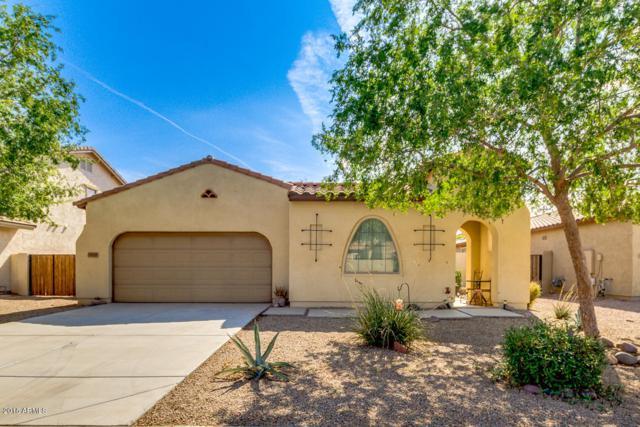 19125 N Goleta Street, Maricopa, AZ 85138 (MLS #5811577) :: Lifestyle Partners Team