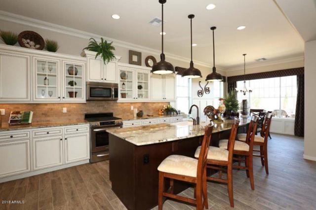 1127 N Quinn, Mesa, AZ 85205 (MLS #5811682) :: Scott Gaertner Group