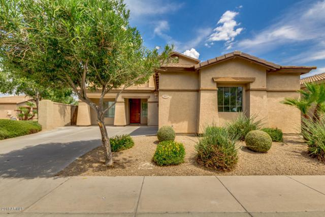 3957 W Roundabout Circle, Chandler, AZ 85226 (MLS #5811722) :: The Jesse Herfel Real Estate Group