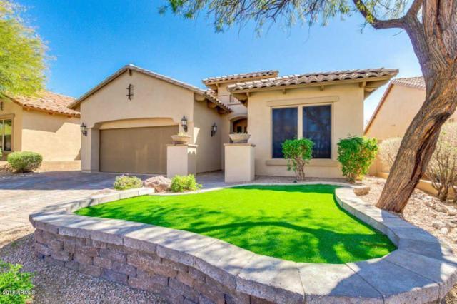 6845 E Portia Street, Mesa, AZ 85207 (MLS #5811744) :: The Wehner Group
