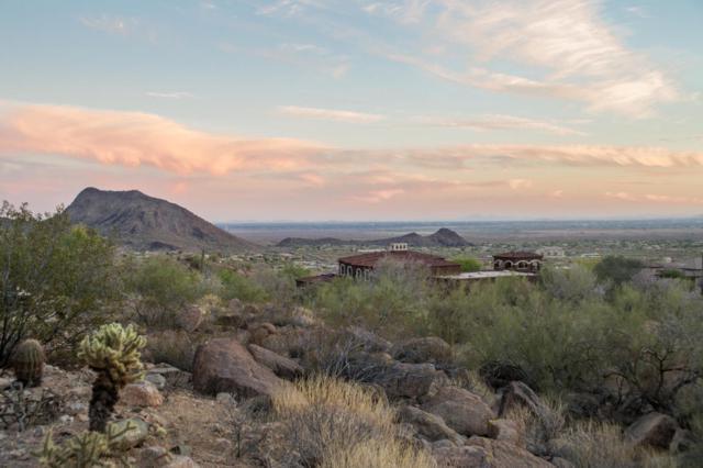 12900 N 137TH Street, Scottsdale, AZ 85259 (MLS #5811845) :: The Wehner Group