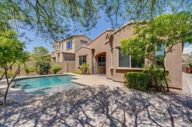 13639 W Creosote Drive, Peoria, AZ 85383 (MLS #5811891) :: The Garcia Group