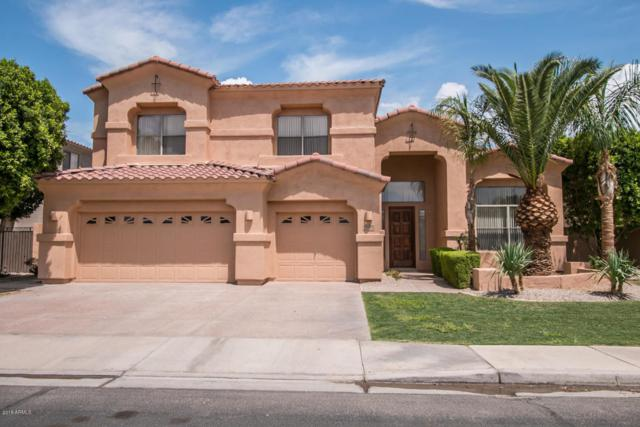 1570 W Prescott Drive, Chandler, AZ 85248 (MLS #5811923) :: Revelation Real Estate