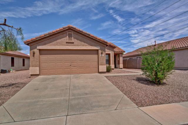 3030 W Lucia Drive, Phoenix, AZ 85083 (MLS #5811936) :: Occasio Realty