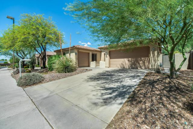 3330 W Morse Drive, Anthem, AZ 85086 (MLS #5812179) :: The Jesse Herfel Real Estate Group
