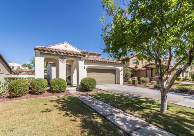 20760 W Hamilton Street, Buckeye, AZ 85396 (MLS #5812290) :: Occasio Realty