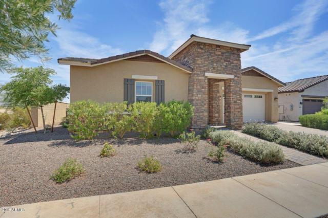 4933 N 207TH Lane, Buckeye, AZ 85396 (MLS #5812366) :: Occasio Realty