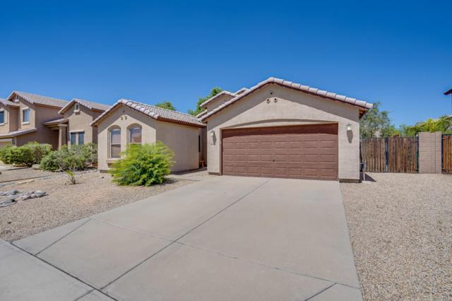 10234 E Carol Avenue, Mesa, AZ 85208 (MLS #5812406) :: The W Group