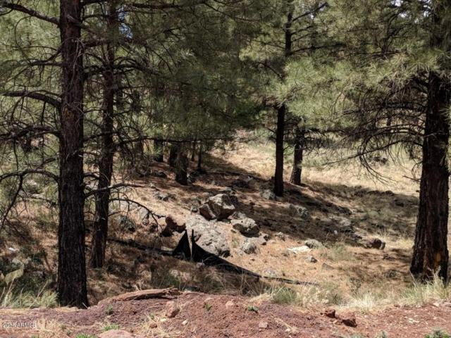 2397 W Mission Timber Circle, Flagstaff, AZ 86001 (MLS #5812541) :: The Garcia Group @ My Home Group