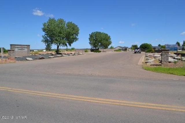 Lot 998 E Sundance Springs, Snowflake, AZ 85937 (MLS #5812567) :: Yost Realty Group at RE/MAX Casa Grande