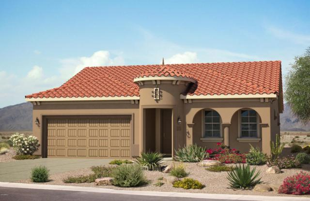 26633 W Matthew Lane, Buckeye, AZ 85396 (MLS #5812570) :: The Daniel Montez Real Estate Group