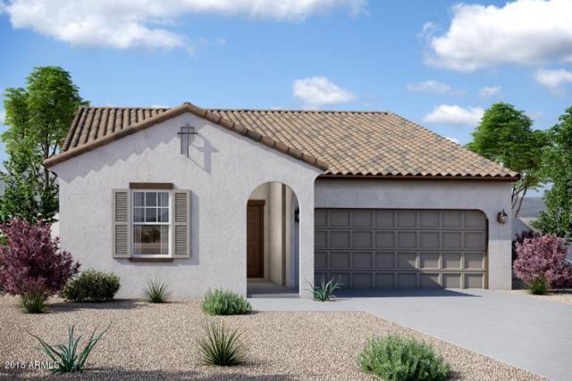 37294 W Cannataro Lane, Maricopa, AZ 85138 (MLS #5812579) :: The W Group