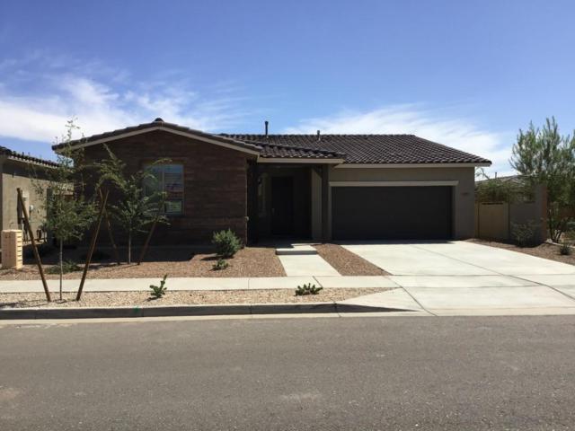 22511 E Duncan Street, Queen Creek, AZ 85142 (MLS #5812594) :: Occasio Realty