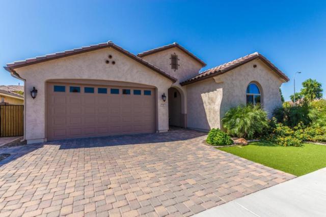 95 E Coconino Drive, Chandler, AZ 85249 (MLS #5812641) :: The W Group