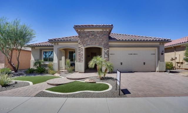 26360 W Tina Lane, Buckeye, AZ 85396 (MLS #5812691) :: The Jesse Herfel Real Estate Group