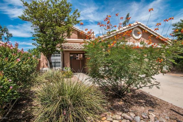 9348 E Aster Drive, Scottsdale, AZ 85260 (MLS #5812835) :: The Everest Team at My Home Group
