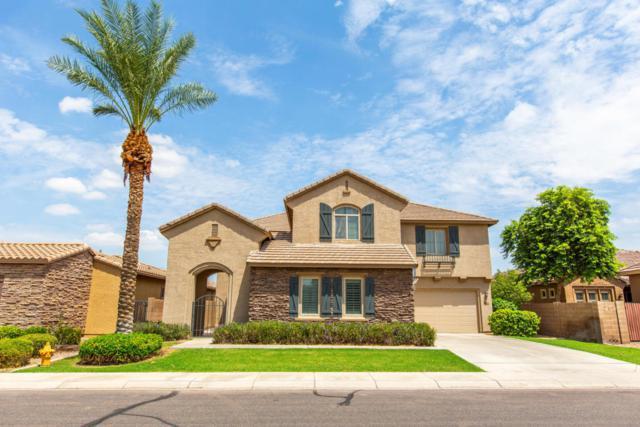 2572 E Lantana Drive, Chandler, AZ 85286 (MLS #5812921) :: Riddle Realty