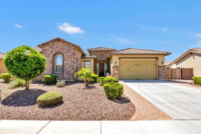 3729 E Ellis Street, Mesa, AZ 85205 (MLS #5812936) :: Yost Realty Group at RE/MAX Casa Grande
