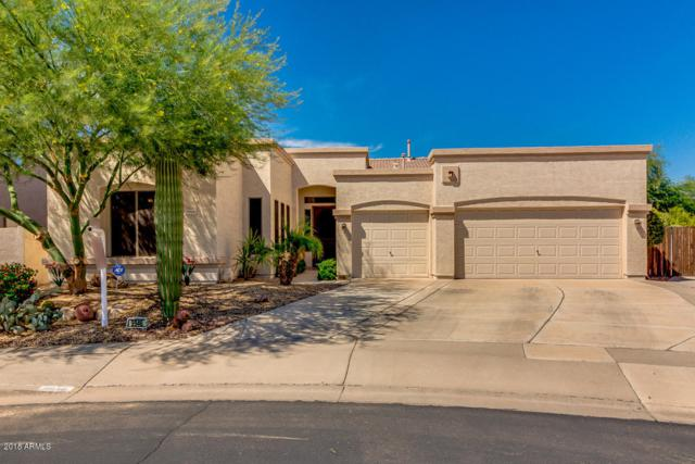 9946 E Lompoc Avenue, Mesa, AZ 85209 (MLS #5812968) :: Santizo Realty Group