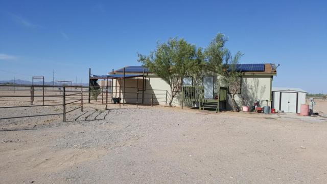 3557 N Saddle Vista Road, Tonopah, AZ 85354 (MLS #5813115) :: The Garcia Group @ My Home Group