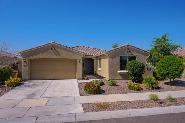 8975 W Alice Avenue, Peoria, AZ 85345 (MLS #5813128) :: The Wehner Group
