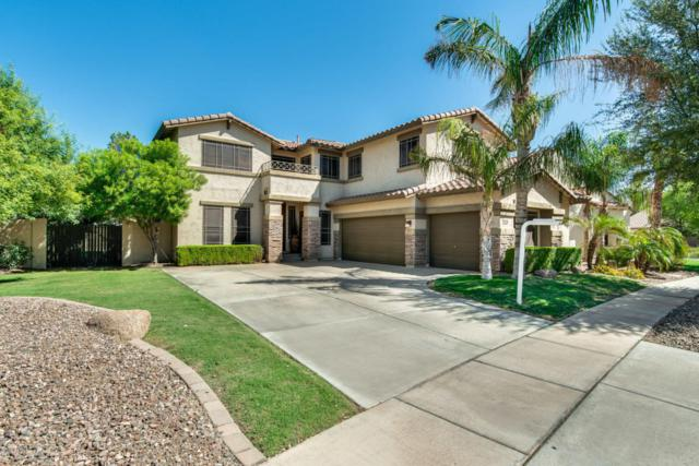 4482 E Marshall Avenue, Gilbert, AZ 85297 (MLS #5813193) :: The Everest Team at My Home Group
