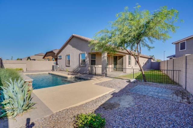 3959 E Blue Spruce Lane, Gilbert, AZ 85298 (MLS #5813221) :: The Garcia Group @ My Home Group