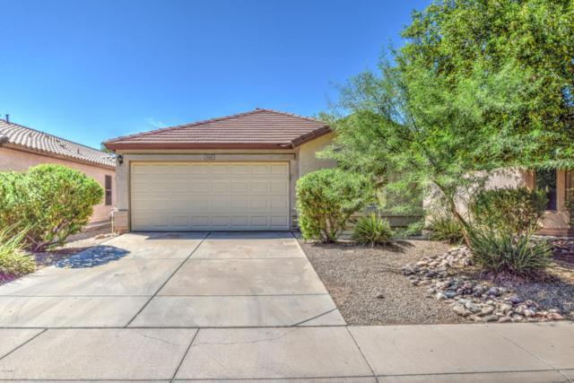 4103 E Mica Road, San Tan Valley, AZ 85143 (MLS #5813239) :: Keller Williams Realty Phoenix