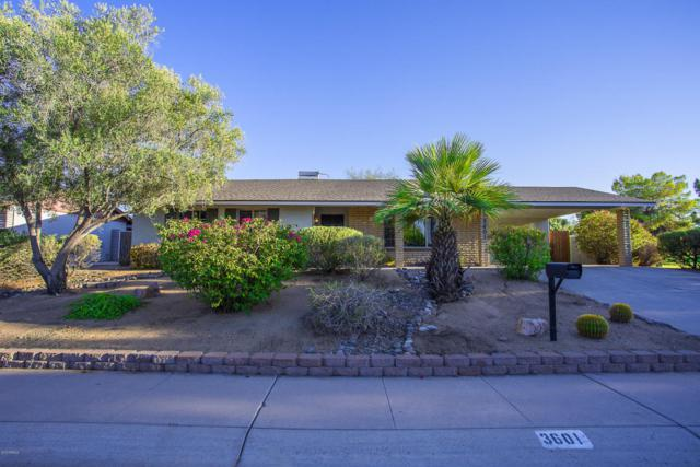 3601 E Columbine Drive, Phoenix, AZ 85032 (MLS #5813413) :: The W Group