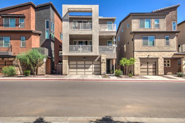 7046 W Stardust Drive, Chandler, AZ 85226 (MLS #5813493) :: Brett Tanner Home Selling Team