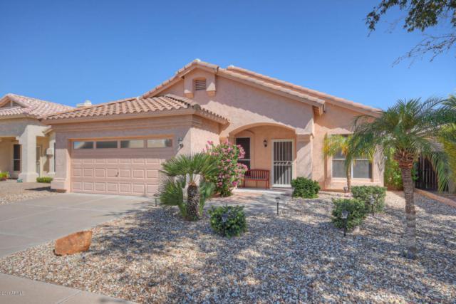 124 W Grandview Road, Phoenix, AZ 85023 (MLS #5813516) :: The W Group